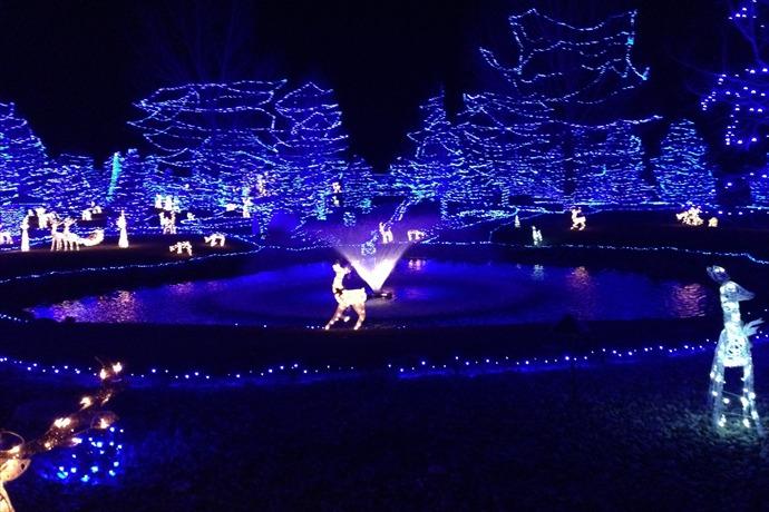 Christmas Lights_636480153024875668