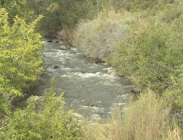 River stream_1193797643910530747