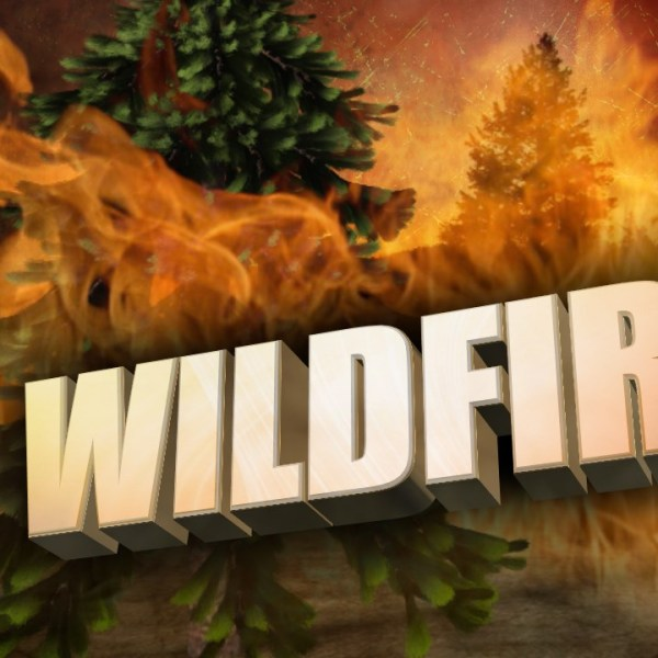 Wildfire_1467339276925.jpg
