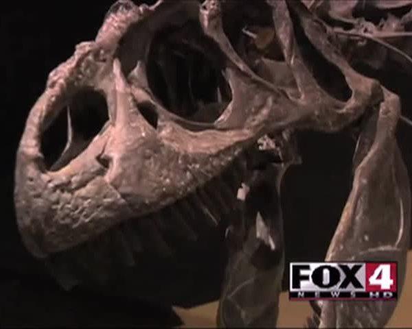 Dinosaur Journey Receives -50-000 Grant_20783844-159532