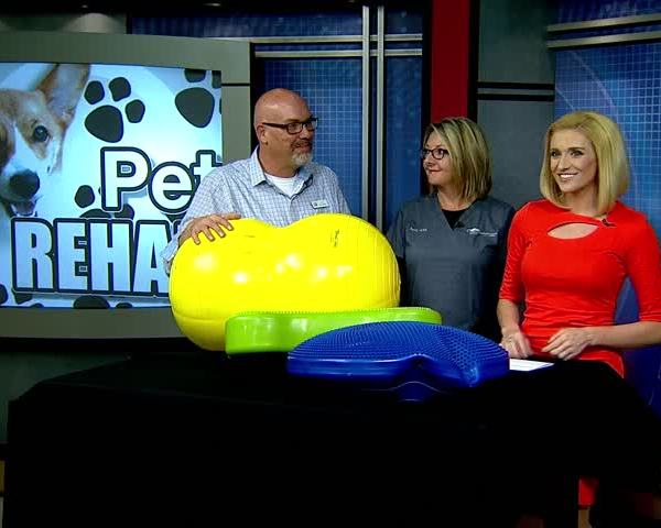 Pet Rehab- Getting your Furry Friends Back on their Paws_34880135