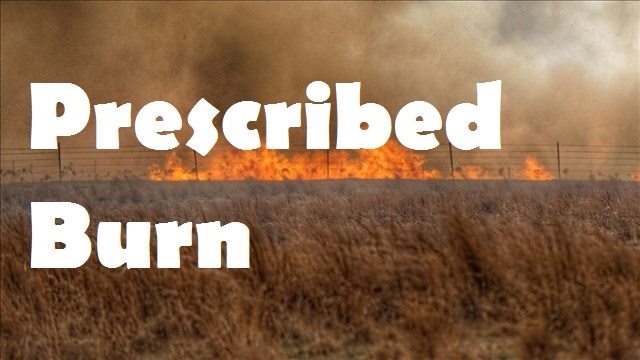 prescribed burn graphic_1524691775162.jpg.jpg