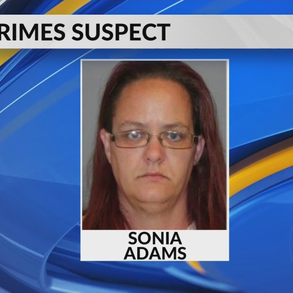 Bond Lowered for Mother Charged with Sex Crimes